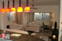 Unique Flat For Rent In Zamalek