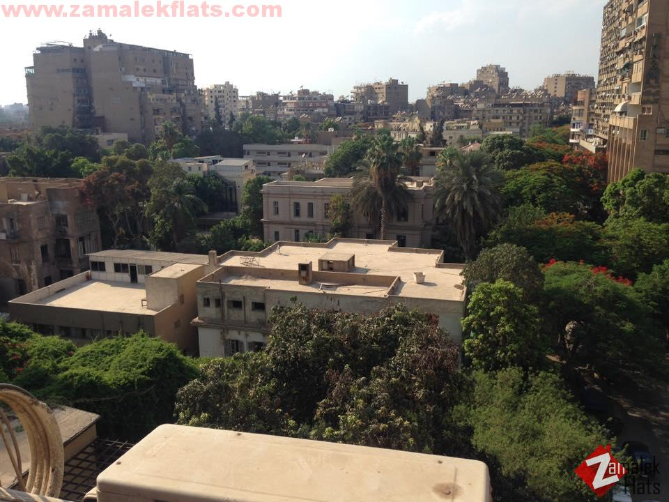 Clean & Sunny apartment for rent in zamalek
