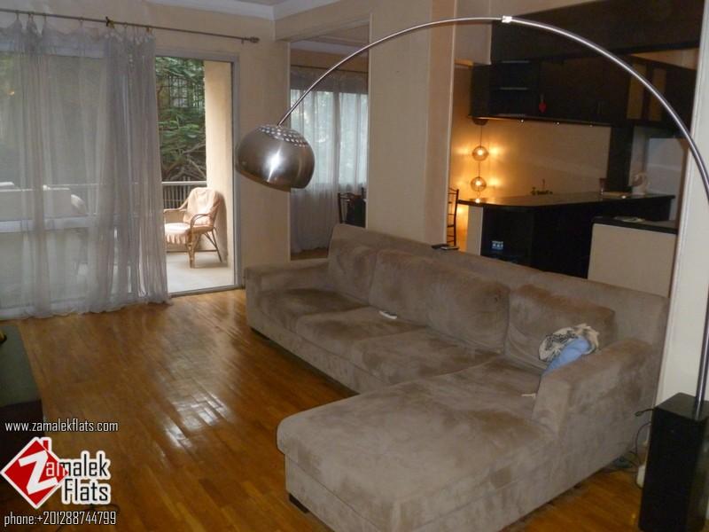 Modern Apartment For Rent In Zamalek