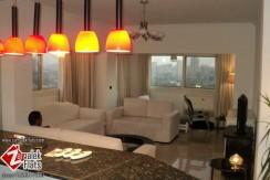 Unique Flat For Rent In Zamalek