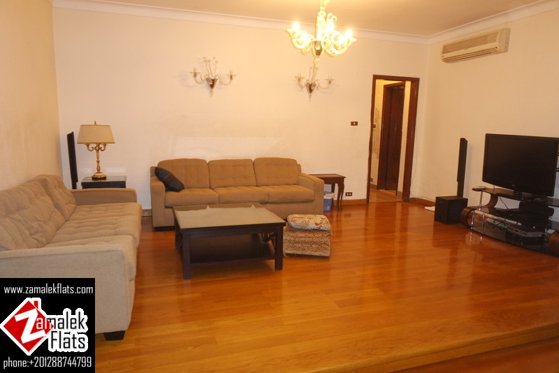 Large Well Furnished Apartment + large Master Room