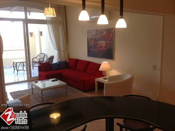 Modern modern furnished apt