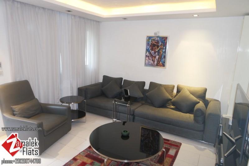 Ground Floor Apartment For Rent In Zamalek
