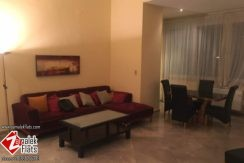 High ceiling furnished apt in zamalek for rent