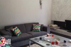 Modern furnished south zamalek