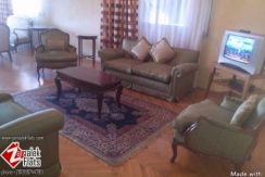 Furnished Apartment for Sale in Zamalek