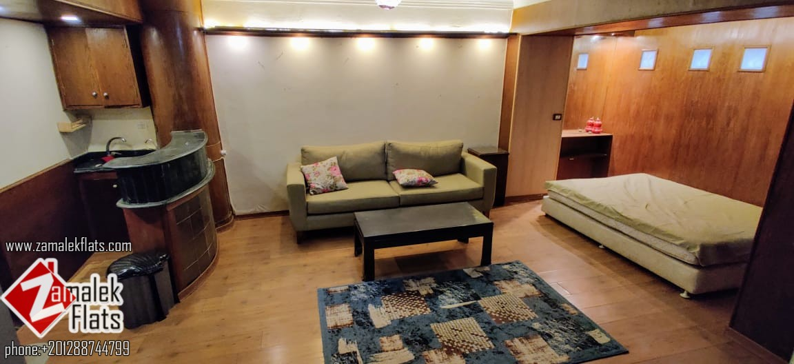 Furnished Studio Apartment for Rent in Zamalek
