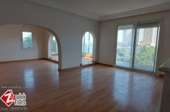 Unique Brand New Finished Apt in Historical Building with Nile View