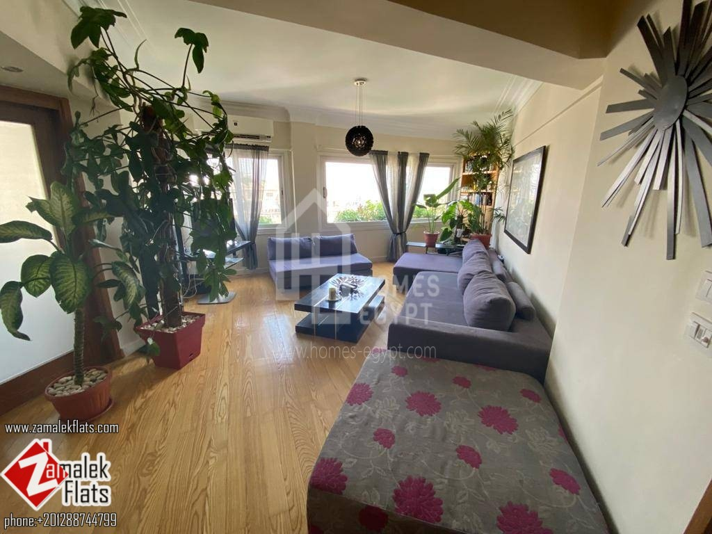 Bright Nile View Apart for Rent in Zamalek